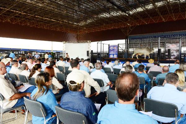 Pavilhão Multiuso do Parque Fernando Costa recebeu centenas de criadores e técnicos