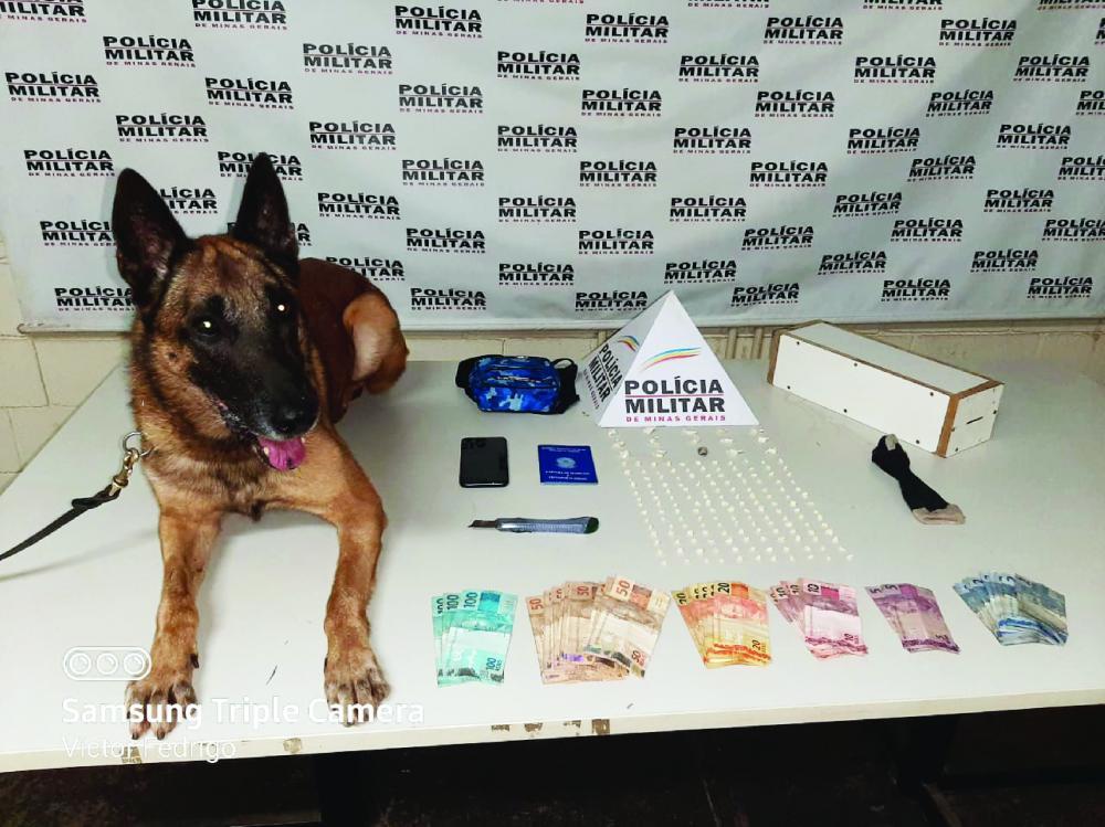 Drogas foram encontradas por cão da Rocca da PM - Foto: Juliano Carlos
