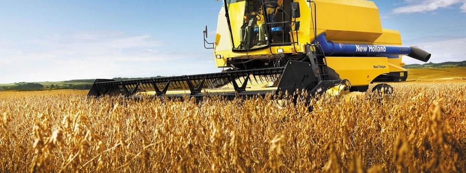 A soja teve um aumento de 16% que culminou em 5,9 milhões de toneladas do grão - Foto: Divulgação/Seapa