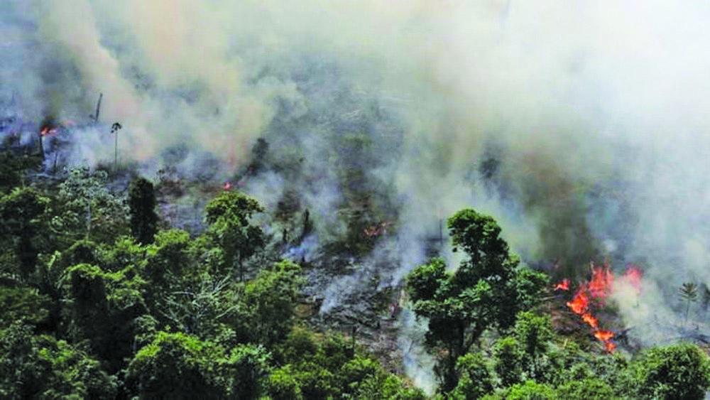 Câmara criará comissão externa para acompanhar queimadas na Amazônia, diz Maia