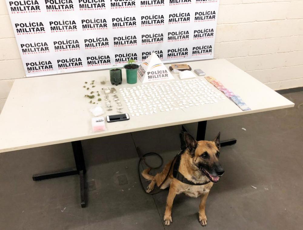 Cocaína, tabletes e pés de maconha foram encontrados na casa do acusado - Foto: Juliano Carlos