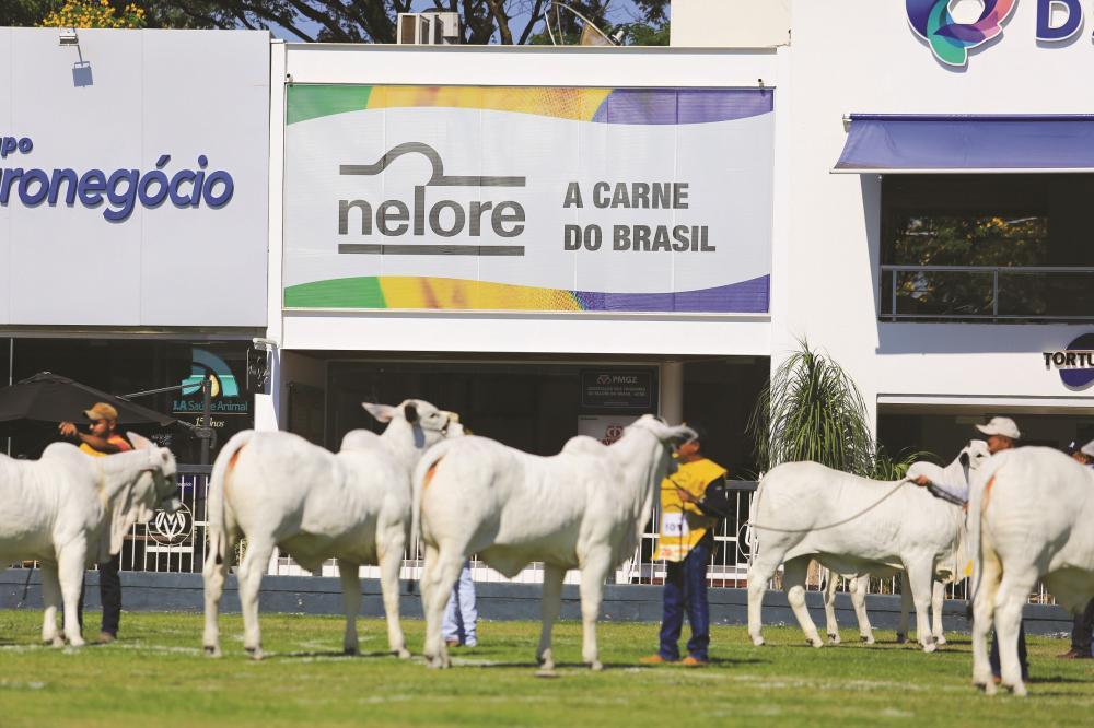 48ª Expoinel, maior evento da raça Nelore do Brasil, que acontece de 19 a 29 de setembro, em Uberaba