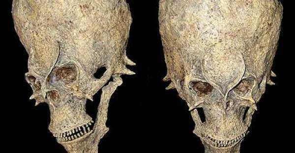 cranio de aliens ena Africa