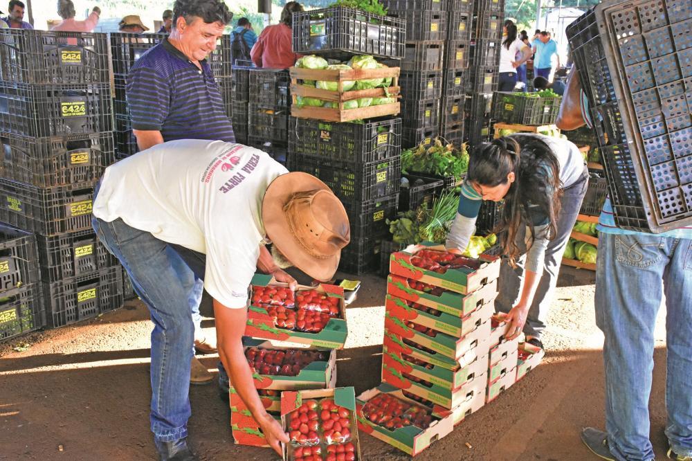 Ceasa Uberaba registra estabilidade de preços em 17 produtos, entre os 29 comercializados - Foto: Neto Talmeli