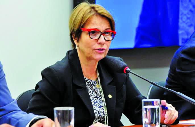 Ministra da Agricultura, Pecuária e Abastecimento, Tereza Cristina elogia o agronegócio brasileiro - Foto: Divulgação