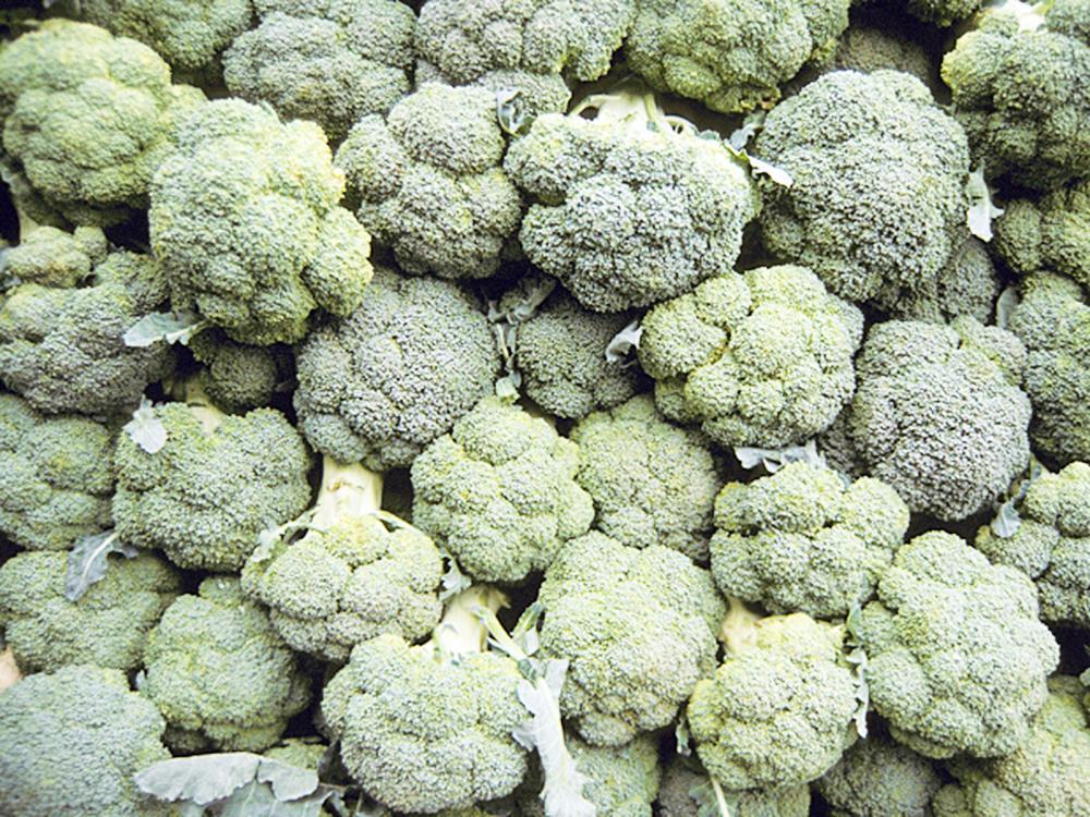 Brócolis é rico em vitamina A - Foto: Laurence Simon/TIPS/Photononstop/AFP