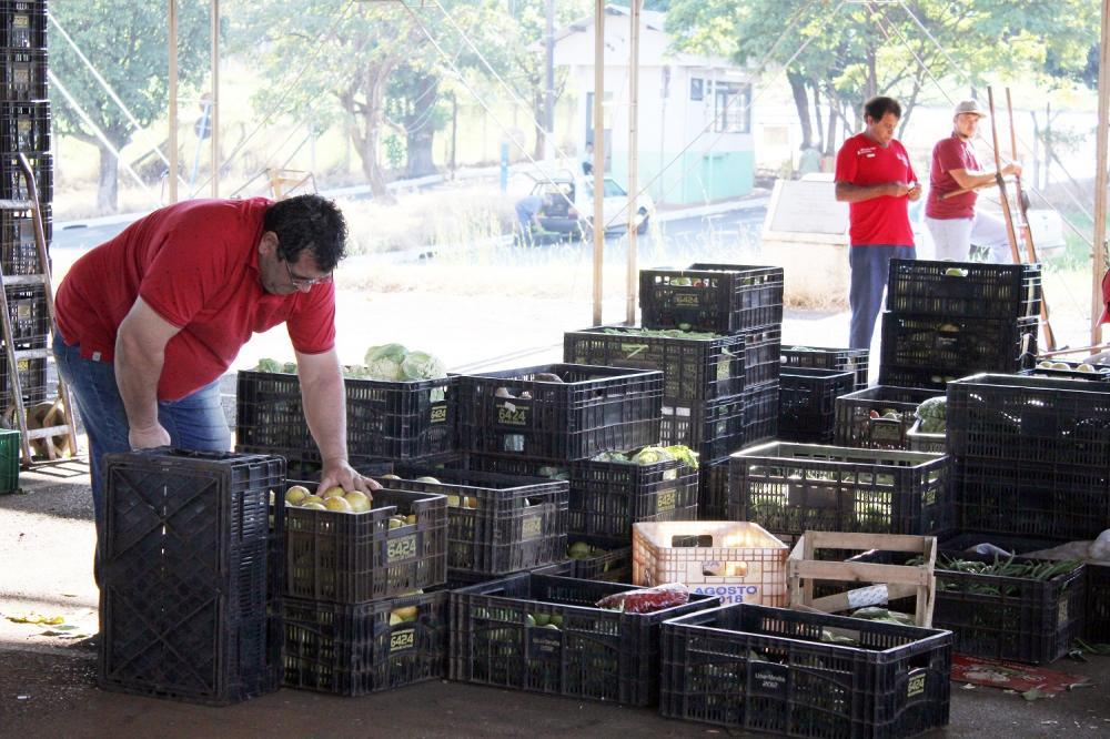 Ceasa Uberaba registra estabilidade de preços em 21 produtos - Foto: Neto Talmeli