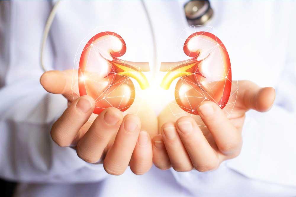 Alvin Roth revolucionou a doação de rins no mundo ao utilizar a teoria econômica para aumentar a disponibilidade de órgãos - Foto: Medicina Sistematizada/Reprodução