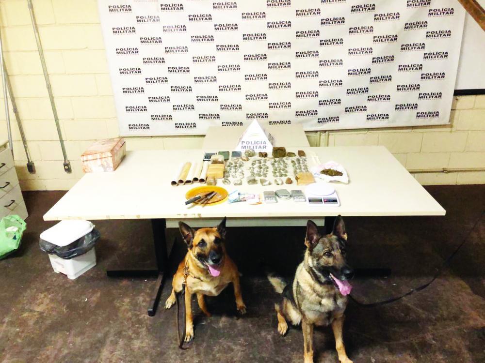 Cães ajudaram a encontrar drogas em casas de suspeitos no Pacaembu e Vila Esperança - Foto: Divulgação