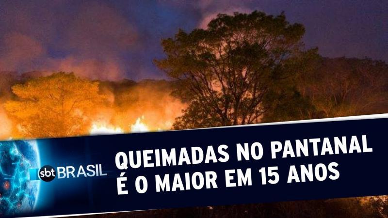 Número de queimadas no Pantanal é o maior em 15 anos